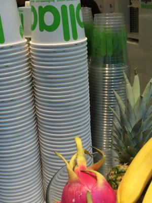 4) llao llao-Yogurt Cups with Fruits